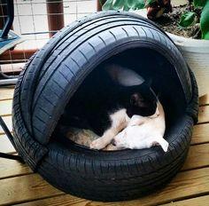 Cama mascotas con neumáticos reciclados