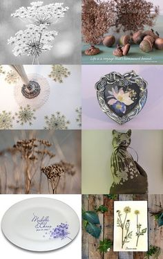Celebrating Queen Anne's Lace - Inspiration from this amazing…