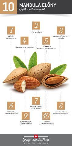 ❤ A mandula tele van E-vitaminnal, fehérjékkel, magnéziummal, rostokkal és esszenciális aminosavakkal is, de sok kalciumot, rezet, cinket, mangánt, B-vitamint, káliumot, foszfort, vasat és egészséges zsírokat is tartalmaz. Telítetlen zsírsavjai között megtalálható a palmitin-, palmitol-, sztearin-, olaj- és linolsav is. A keserűmandulából nyert mandulaolaj kitűnő bőr- és hajápoló szer, melytől bársonyosan puha és egészséges lesz bőrünk, hajunk pedig selymes és csillogó. Health 2020, Keto Recipes, Healthy Recipes, Keto Cookies, Food Hacks, Life Is Good, Herbalism, Healthy Lifestyle, Health Care