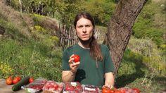 """Die Inzucht-Industrie, Clemens G. Arvay stellt sein Buch über die Machenschaften der Saatgutindustrie vor. """"Wussten Sie, dass Sie bereits Gemüse aus gentechnik-ähnlichen Technologien auf ihren Tellern haben?"""""""