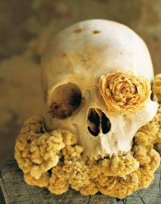 Skull flowers from Bloom Magazine