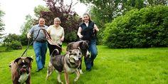 """Wir, Kirsten und Detlef Scheler und unsere Tochter Svenja sind selbst Hundefreunde und """"Herrchen"""" bzw. """"Frauchen"""" von Amira, Olivia, Rocky und Nero."""