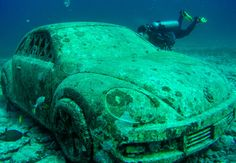 Beautiful, high quality pictures involving the sea or sea life. Sea Photo, Vw, Sci Fi, Internet, Sculpture, Science Fiction, Sculptures, Sculpting, Statue