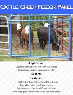 Cattle Creep Feeder Panel For my horse Amanda to keep the other horses out of her feed.she is smaller than everyone else. Cattle Farming, Goat Farming, Ranch Farm, The Ranch, Rinder Stall, Show Cattle Barn, My Horse, Horses, Dexter Cattle