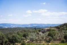 Connect with nature in the heart of Tuscany. Ebbio is a villa and organic farm near Monteriggioni. Organic Farming, Tuscany, Countryside, Grand Canyon, Villa, Trees, Interiors, Mountains, Garden
