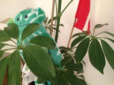 Craftholic hide & seek