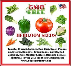 Heirloom Vegetable Seeds Bulk Pack - Best For Planting Sprouting and Gardening Non GMO Non Hybrid Seeds- Perfect Gift For Gardener or As Doomsday Supplies for Preppers. -- Discover this special product, click the image : Gardening DIY