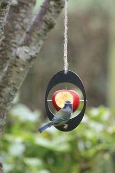 Recycled bird feeder – This bird feeder is a simple, elegent way of recycling unwanted food to your local wildlife. The feeder is made from recycled plant pots, that are gathered, recycled and made into modern products for the home and garden. The eco bird feeder is ready to hang in your garden – a … Read More →