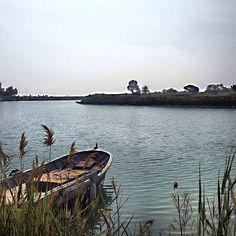 Port Puniques, Tunisie