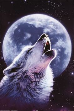 Howling Wolf | Howling Wolf