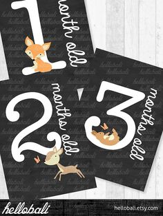 Month by Month Baby Milestone Cards Woodland Fox by HelloBali