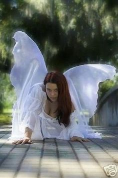 1000 images about angels fairies and pixies on pinterest for Angel wings wedding dress