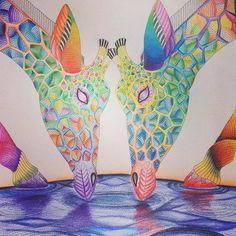 #milliemarotta #coloringbook #calming #giraffes #rainbow #colours #colourful ☺️