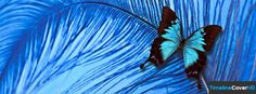Butterfly 243 Facebook Timeline Cover Hd Facebook Covers - Timeline Cover HD