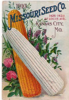 MISSOURI SEED CO. 1910 SEED CATALOG COVER ONLY