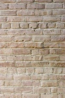 Bricks after white washing.....