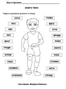 Kindergarten body worksheets human body parts worksheets. Esl Lessons, English Lessons, French Lessons, Spanish Lessons, Kids English, Learn English, Learn French, Kindergarten Worksheets, Worksheets For Kids