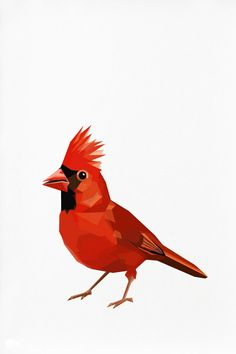Cardinal, Red Cardinal, Geometric illustration , Bird print, Original illustration
