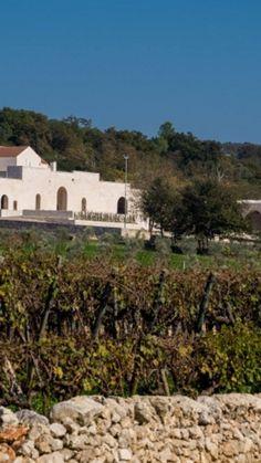 Da 89 euro a COPPIA per AGRITURISMO DA SOGNO da AGRITURISMO PARETANO a MONOPOLI! #relax tra la natura della #Puglia #travel #Italy