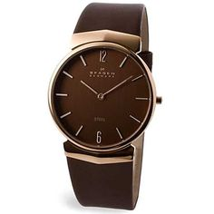 440bbc56cef Skagen Steel 695XLRLD Mens Watch