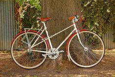 The British 'handmade bicycle family tree' is almost as gnarled and twisted as the Italian, with builders moving from one brand name and family business to another, as they either went broke or were bought out by larger ones. The story of William Frank 'Sandy' Holdsworth is a particularly knotted branch and one person who could tell it well is Melbourne's Andrew Blake, a vintage enthusiast who renovated this Lady Mistral, Holdsworth's top of the line mixte circa 1982-83.