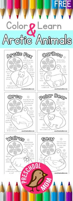 Free Arctic Animals Color and Learn!  http://preschoolmom.com/preschool-printables/arctic-animal-preschool-printables/