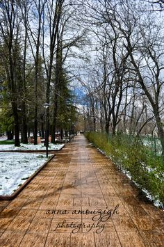Ifrane, Morocco  I've been here.. February 2012  Strangely it felt like I was in Europe rather then Morocco in this city.