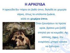 Πληροφορίες κι Εποπτικό Υλικό: Ζώα σε Χειμερία Νάρκη Winter Art, Arts And Crafts, Seasons, Education, Animals, Worksheets, Kindergarten, School, Animales
