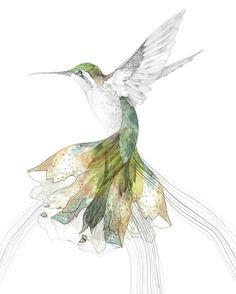 Delicate Hummingbird in flight - drawing