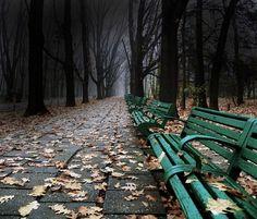 "bluepueblo: "" Dark Park, Bucharest, Romania photo via elinka "" The Places Youll Go, Places To See, Little Paris, Bucharest Romania, Grand Tour, Macedonia, Historical Sites, Albania, Pathways"