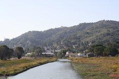 Martinez, CA : Looking toward downtown from the marina