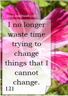 121 I no longer waste time trying to change things I cannot change | A Sunlit Walk