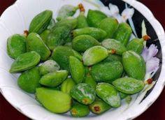 چغاله بادوم Chaghaleh Badoom - green almonds - delicious with salt