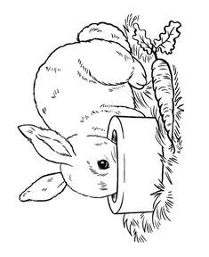easter bunny coloring page pet bunny
