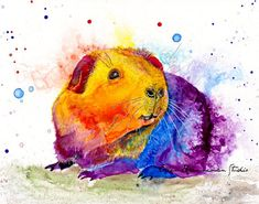 Colorful Guinea Pig art print Spirit Animal decor by Ellen Brenneman Pet Guinea Pigs, Guinea Pig Care, Hamsters, Wallpaper Kawaii, Guniea Pig, Pig Art, Cross Stitch Animals, Animal Totems, Wombat