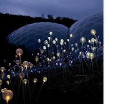 Installation by lighting designer Bruno Munro for the Eden Project in Cornwall, England. + Eden Project +Bruno Munro via: Dezeen Eden Project, Light Project, Land Art, Instalation Art, Bokashi, Eco Architecture, Commercial Architecture, Contemporary Architecture, Contemporary Art