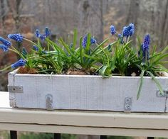 Beautiful Simple DIY Garden Box for the Deck or Patio Made with Pallets via http://diypallets.com