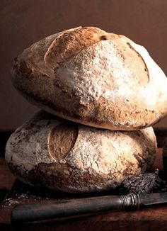 sourdough primer: differences between stiff and liquid starter, and how to convert one to the other