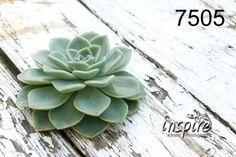 canvas-print-pretoria-inspire-canvas-green-kaktus-canvas-boeremark-markets-afresh-photography-inspire-art-24