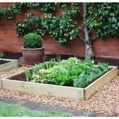 Comment dmarrer un potager biologique urbain? (French article on how to start an organic vegetable garden)
