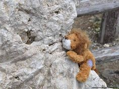 Lou on a via ferrata in the Dolomites in Italy representing bravery and fierce resolve for Teddy & Friends. Teddy Bear, Italy, Adventure, Friends, Travel, Animals, Amigos, Italia, Viajes