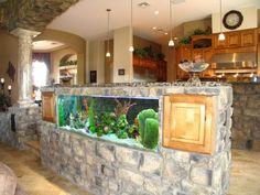 my house would not be complete without a shark tank!
