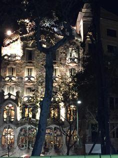 Belovee Barcelona