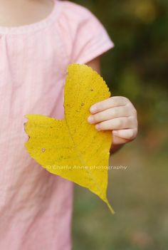 a beautiful Autumnal leaf in the shape of a heart