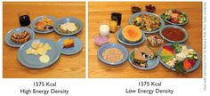 1575 Kcal make your choice lose-it-all-for-you:  bodydiy:  Energy Density means calories divided by grams/weight. The low energy density foods are also high nutrient dense foods.  Always blows my mind!