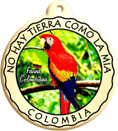 Nuestra fauna, incomparable!! Places In Europe, Places To Go, Colombian Culture, Trip To Colombia, Colombia South America, Exotic Places, Fauna, Vintage Travel Posters, Photo Booth