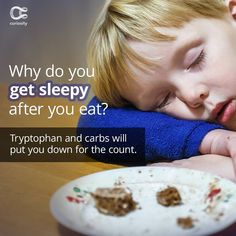 The food coma is real, and it's science. Check out the full article on Curiosity.com and in the Curiosity app! #foodcoma #yum #sleepy #curiosity Discovery Channel Shows, Curiosity, Science, Learning, App, Food, Check, Instagram, Eten