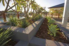 63 best WA coastal garden ideas images on Pinterest   Backyard ideas ...