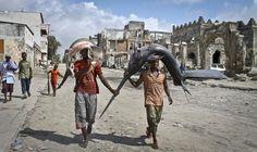 Somali fishmongers carry a freshly caught shark (left) and a swordfish to the market in Mogadishu, Somalia, on October 25, 2012.