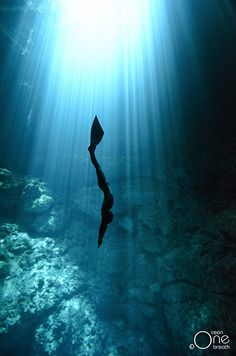 Freediving the Cenotes of the Yucatan